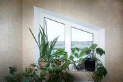 Стеклопакеты и пластиковые окна
