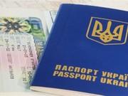 Выдача виз: туристические,  рабочие,  шенген