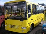 Автобус  А 08116 школьный