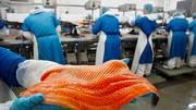 На работу в Польшу нужны упаковщики рыбного филе
