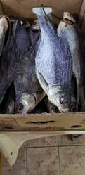 Рыбоперерабатывающее предприятие реализует речную вяленую и копченую р